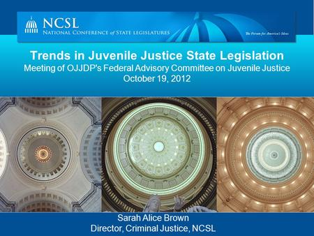 Trends in Juvenile Justice State Legislation Meeting of OJJDP's Federal Advisory Committee on Juvenile Justice October 19, 2012 Sarah Alice Brown Director,