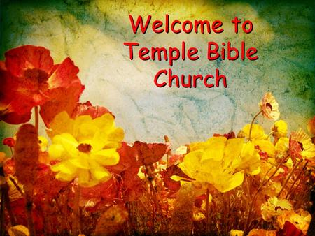 Welcome to Temple Bible Church. Growing Deep Reaching Out Growing Deep Reaching Out.