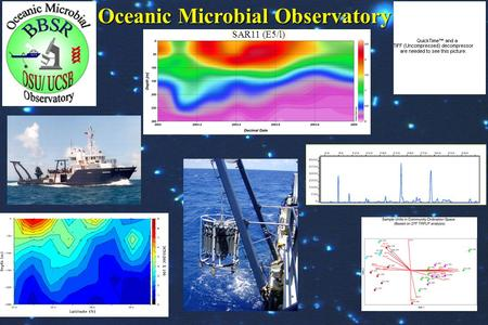Oceanic Microbial Observatory SAR11 (E5/l). 1. 1.Identify spatial and temporal patterns in specific bacterioplankton/ prokaryotic populations 2. 2.Initiate.