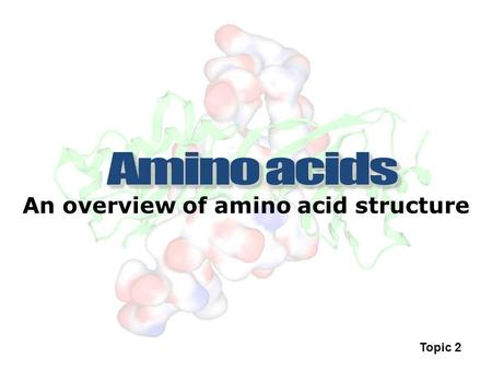 An overview of amino acid structure Topic 2. Biomacromolecule A naturally occurring substance of large molecular weight e.g. Protein, DNA, lipids etc.