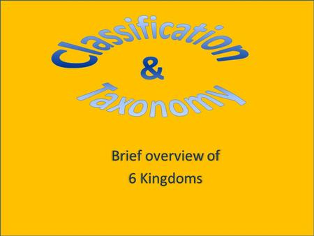 Brief overview of 6 Kingdoms. Classification Grouping of objects or information based on similarities Helps scientists understand what different species.