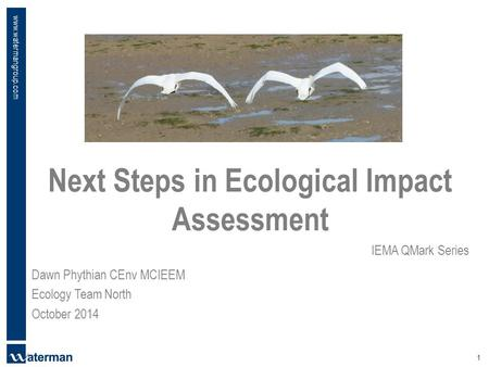 Www.watermangroup.com Next Steps in Ecological Impact Assessment IEMA QMark Series 1 Dawn Phythian CEnv MCIEEM Ecology Team North October 2014.