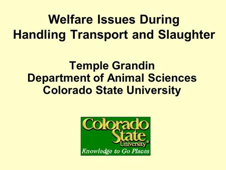 Welfare Issues During Handling Transport and Slaughter Temple Grandin Department of Animal Sciences Colorado State University.