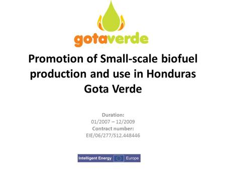 Promotion of Small-scale biofuel production and use in Honduras Gota Verde Duration: 01/2007 – 12/2009 Contract number: EIE/06/277/S12.448446.