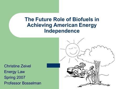 the role of biofuels Concerns about food price inflation • governments begin to act nervously • have  market conditions changed fundamentally • what is the role of biofuels.
