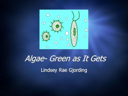 Algae- Green as It Gets Lindsey Rae Gjording.  What is Algae?  Necessities of Life  Oil Extraction Methods  Algae as a Fuel: Biodiesel and Hydrogen.