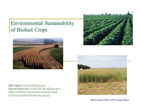 Environmental Sustainability of Biofuel Crops Bill Chism David Widawsky Office of Policy, Economics and Innovation.