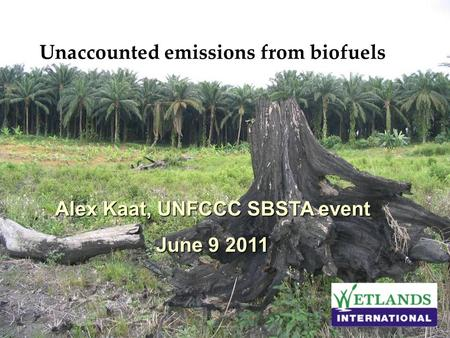 Unaccounted emissions from biofuels Alex Kaat, UNFCCC SBSTA event June 9 2011.