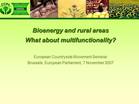 Bioenergy and rural areas What about multifunctionality? European Countryside Movement Seminar Brussels, European Parliament, 7 November 2007.
