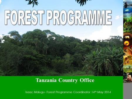 Isaac Malugu- Forest Programme Coordinator14 th May 2014 Tanzania Country Office.