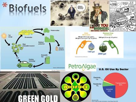  History of biofuels  Inconsistencies with biofuels?  Projects  Algenol Company  Sapphire Energy Company  Where biofuels are now  Trends that will.
