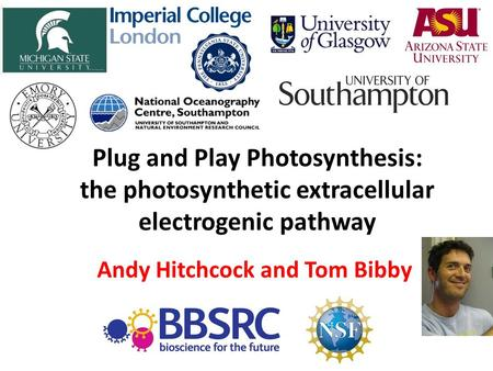 Plug and Play Photosynthesis: the photosynthetic extracellular electrogenic pathway Andy Hitchcock and Tom Bibby.