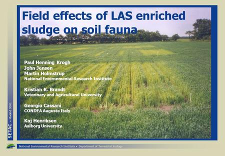 National Environmental Research Institute Department of Terrestrial Ecology SETAC Madrid 2001 Field effects of LAS enriched sludge on soil fauna Paul Henning.