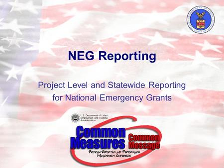 NEG Reporting Project Level and Statewide Reporting for National Emergency Grants.