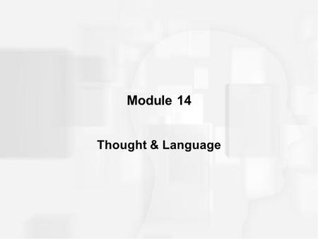 Module 14 Thought & Language. INTRODUCTION Cognitive Approach method of studying how we process, store, and use information and how this information,