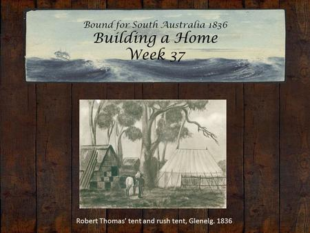 Bound for South Australia 1836 Building a Home Week 37 Robert Thomas' tent and rush tent, Glenelg. 1836.