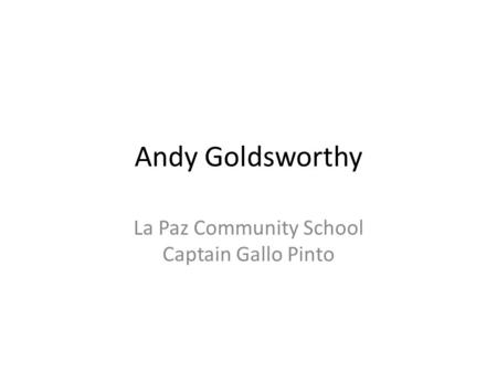 Andy Goldsworthy La Paz Community School Captain Gallo Pinto.