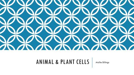 ANIMAL & PLANT CELLS Mollie Billings. Content Area: Science Grade Level: Fifth Summary: The purpose of this instructional PowerPoint is to have the students.