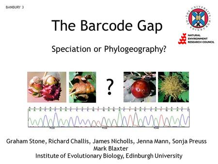 The Barcode Gap Speciation or Phylogeography? BANBURY 3 ? Graham Stone, Richard Challis, James Nicholls, Jenna Mann, Sonja Preuss Mark Blaxter Institute.