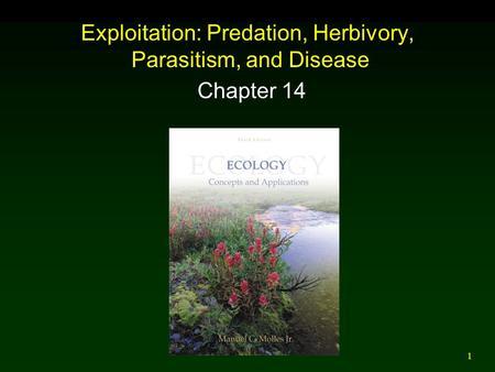 define predation herbivory and parasitism relationship