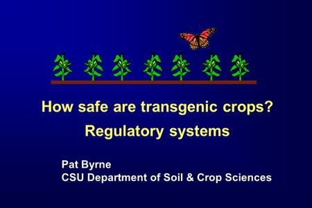 How safe are transgenic crops? Regulatory systems Pat Byrne CSU Department of Soil & Crop Sciences.