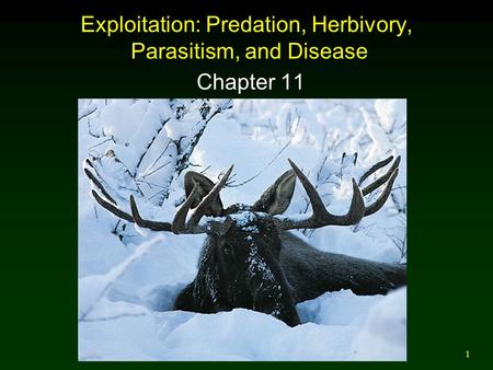 1 Exploitation: Predation, Herbivory, Parasitism, and Disease Chapter 11.