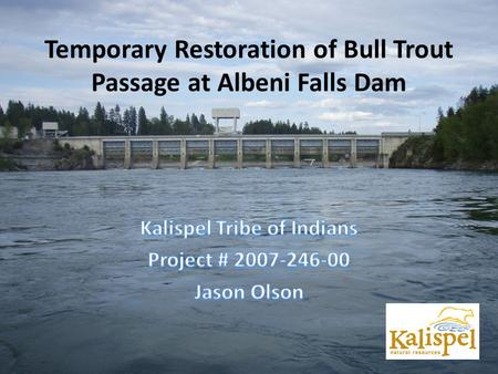 Temporary Restoration of Bull Trout Passage at Albeni Falls Dam.