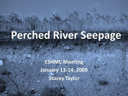 Perched River Seepage ESHMC Meeting January 13-14, 2009 Stacey Taylor.
