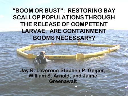 """BOOM OR BUST"": RESTORING BAY SCALLOP POPULATIONS THROUGH THE RELEASE OF COMPETENT LARVAE. ARE CONTAINMENT BOOMS NECESSARY? Jay R. Leverone Stephen P."