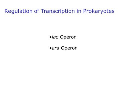 Regulation of Transcription in Prokaryotes