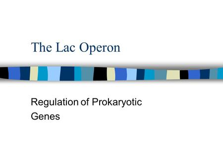 The Lac Operon Regulation of Prokaryotic Genes. n Scientists investigated a transcriptionally regulation system using the lactose metabolism system in.