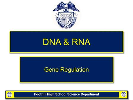 Foothill High School Science Department DNA & RNA Gene Regulation.