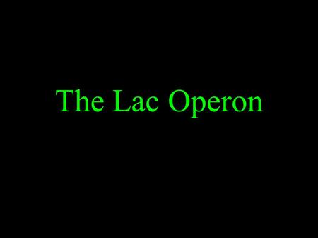 The Lac Operon. Lactose = Galactose and Glucose Cells adapt to their environment by turning on and off genes. An operon is a cluster of bacterial genes.