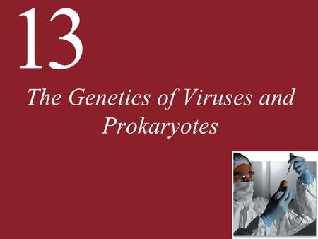 13 The Genetics of Viruses and Prokaryotes. 13 The Genetics of Viruses and Prokaryotes 13.1 How Do Viruses Reproduce and Transmit Genes? 13.2 How Is Gene.