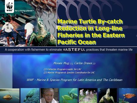 Marine Turtle By-catch Reduction in Long-line Fisheries in the Eastern Pacific Ocean Moises Mug (1), Carlos Drews (2) (1) Fisheries Program Leader for.