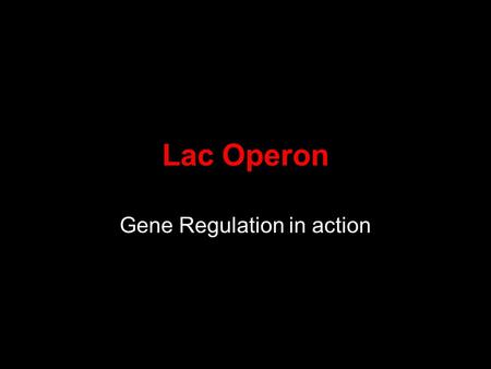 Lac Operon Gene Regulation in action. What is gene regulation Expressing a gene –Making the protein for the gene Only making a protein when needed The.