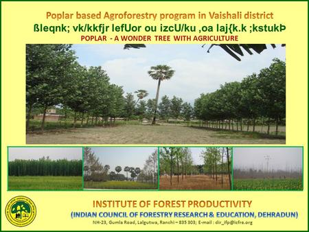 "Under the aegis <strong>of</strong> ICFRE, Dehradun Institute <strong>of</strong> Forest productivity, Ranchi is implementing Agroforestry component <strong>of</strong> ""Samudai Adharit Samanvit Van Prabandhan."