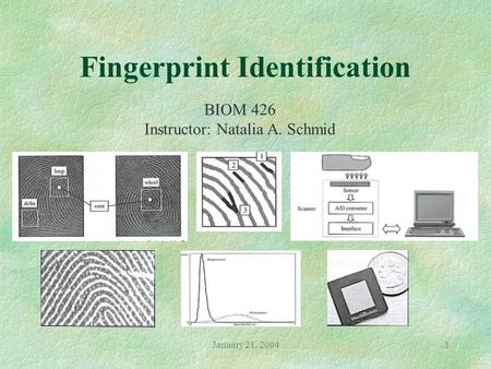 January 21, 20041 Fingerprint Identification BIOM 426 Instructor: Natalia A. Schmid.