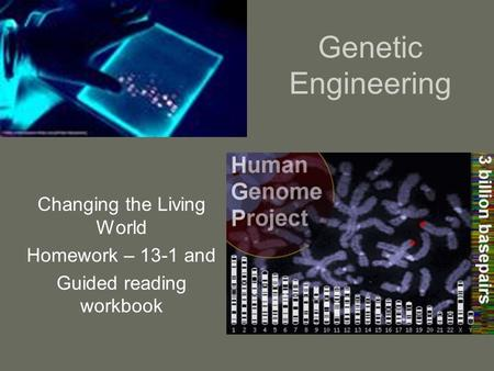 Genetic Engineering Changing the Living World Homework – 13-1 and Guided reading workbook.