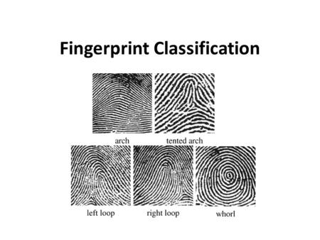 Fingerprint Classification. Classifying Prints Why classify prints? To add order to chaos – like a library organizing books by author or subject matter.