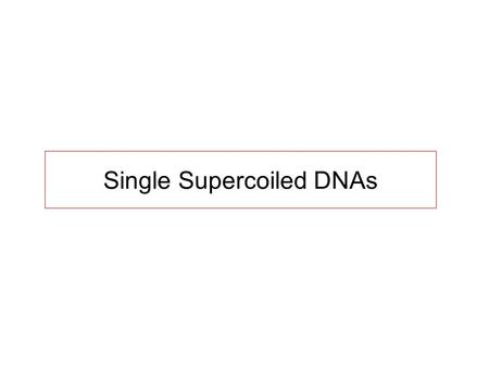 Single Supercoiled DNAs. DNA Supercoiling in vivo In most organisms, DNA is negatively supercoiled (  ~ -0.06) Actively regulated by topoisomerases,