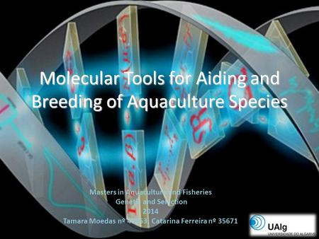 Molecular Tools for Aiding and Breeding of Aquaculture Species Masters in Aquaculture and Fisheries Genetic and Selection 2014 Tamara Moedas nº 47853;