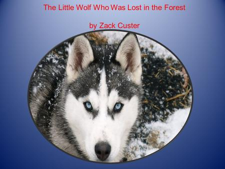 The Little Wolf Who Was Lost in the Forest by Zack Custer.