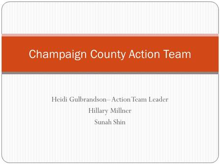 Heidi Gulbrandson– Action Team Leader Hillary Millner Sunah Shin Champaign County Action Team.