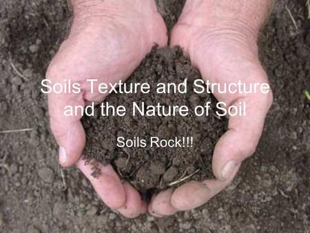 Soils Texture and Structure and the Nature of Soil Soils Rock!!!