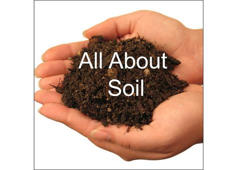 All About Soil All About Soil. Soil can basically be separated into 5 main parts: 1.Humus 2.Clay 3.Silt 4.Sand 5.Gravel.