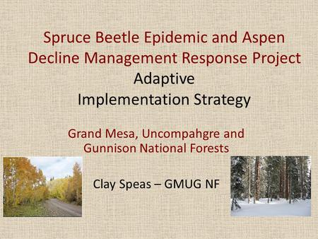 Spruce Beetle Epidemic and Aspen Decline Management Response Project Adaptive Implementation Strategy Grand Mesa, Uncompahgre and Gunnison National Forests.