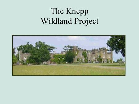 The Knepp Wildland Project. Knepp in 15 min Past - The roller-coaster ride of farming Present - The Zen-like art of letting go Future – Creators of disturbance.