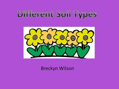Breckyn Wilson. Content Area: Science Grade Level: Second Grade Summary: The purpose of this instructional PowerPoint is for the students to interactively.