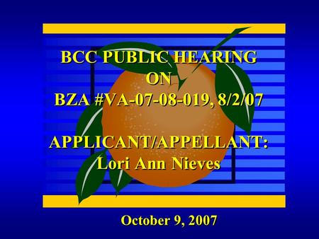 October 9, 2007 BCC PUBLIC HEARING ON BZA #VA-07-08-019, 8/2/07 APPLICANT/APPELLANT: Lori Ann Nieves.